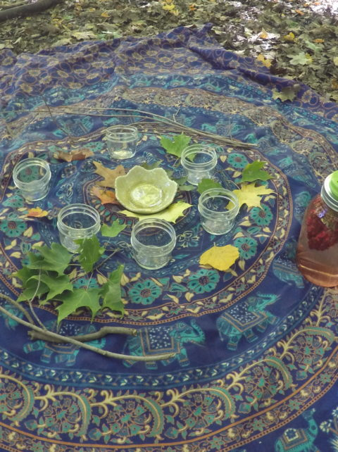 Tea ceremony at the end of a forest therapy forest bathing walk in Toronto